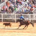 Calf Roping Casa Grande AZ Cowboy and Indian Days Rodeo ALL INDIAN RODEO