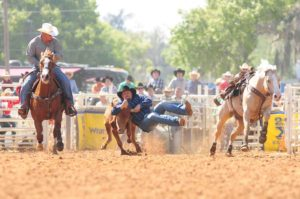 Photo Credit: ArcadiaRodeo.com
