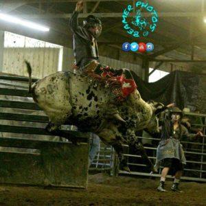 URA-Bull-Riding-Photo-Courtesy-of-Beamer-Photos
