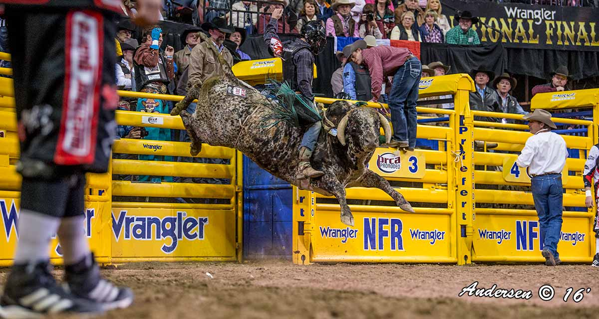 Garret Tribble on Big Jake of Salt River Rodeo 85 point score during-Round7 WNFR16