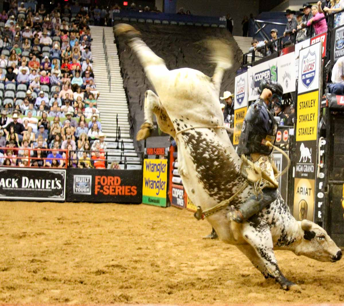 Pbr Bfts Cooper Tires Take The Money And Ride 2017
